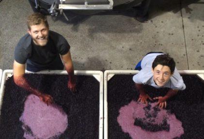 Bertus van Zyl and Jake punching down wine