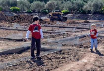 little boys in the new culinary garden